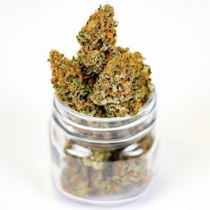 marijuana-3646055_640