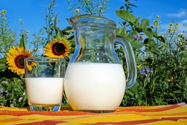 Produits laitiers des aliments indispensables