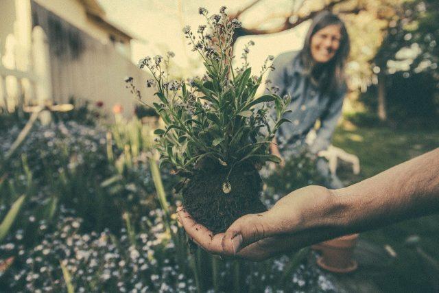 Quelques idées de cadeau pour jardinage
